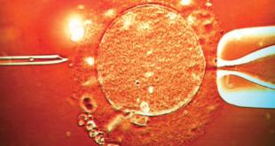 Бесплодие, неудачи ЭКО и тромбофилия